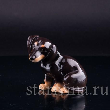 Фарфоровая статуэтка собак Сидящая такса, миниатюра, Von Schierholz, Германия, 1950 гг.
